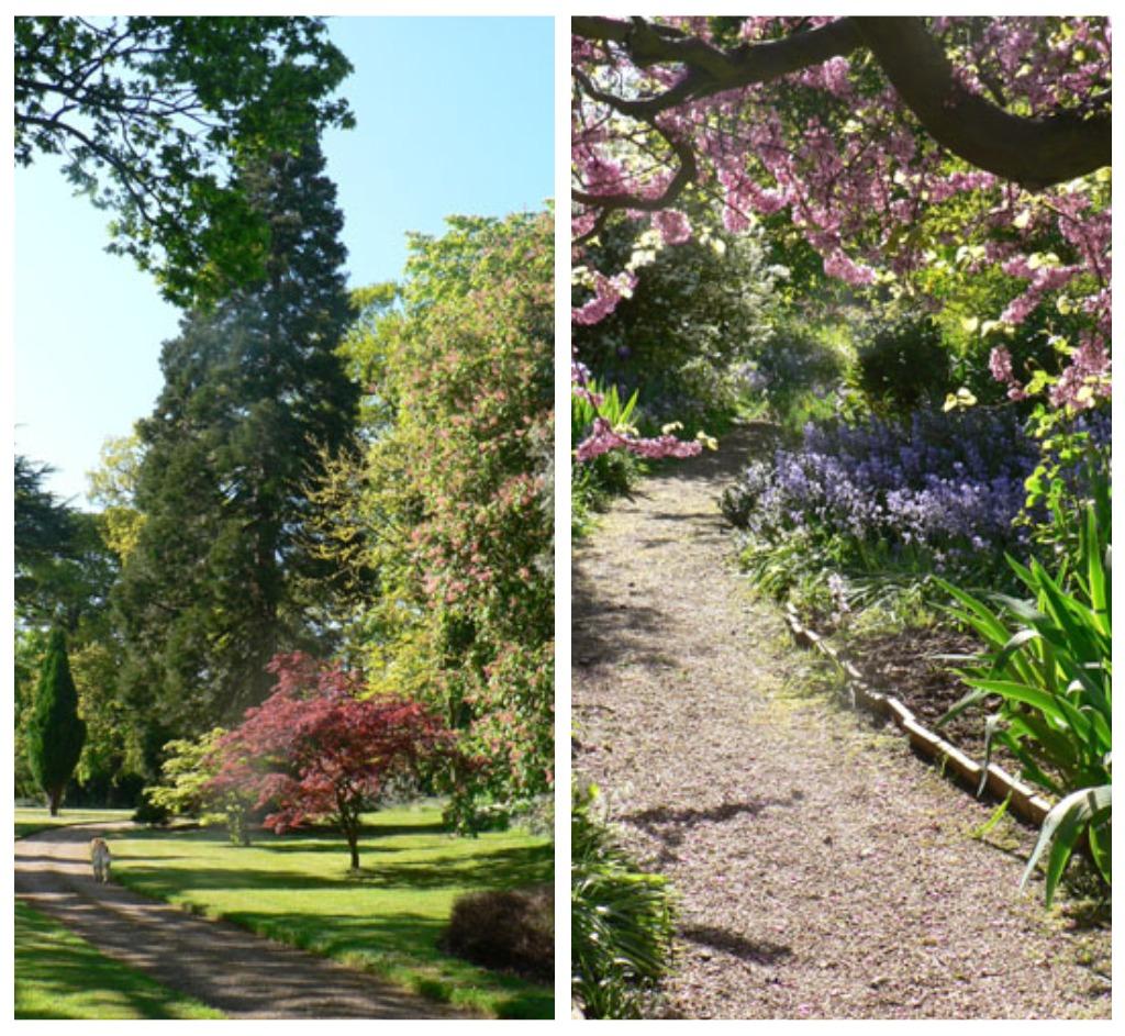 how to create an english country garden