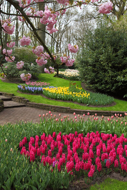 spring-flower-garden-11281366664wzK0